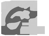 Chalets Claudet Sàrl Logo